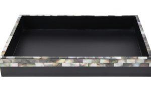 Tray TP-09508