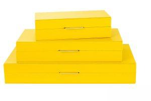 Decorative box (L) ZH-03138