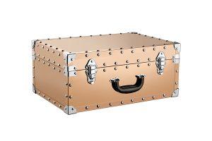 Decorative box (L) ZH-03148